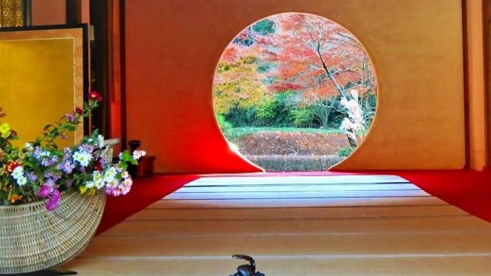 鎌倉散策・紅葉狩り♪