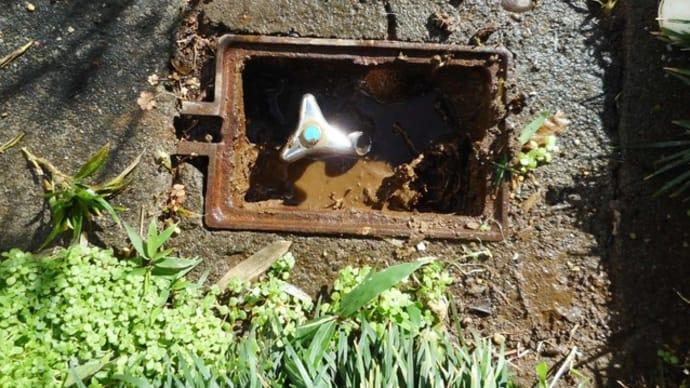 散水栓からの水漏れ修理