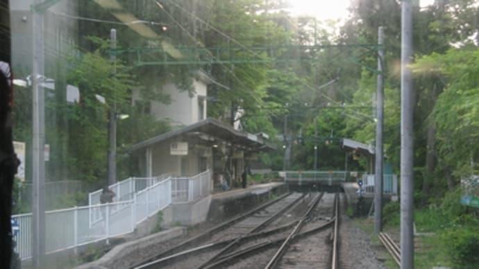大平台駅の配線?