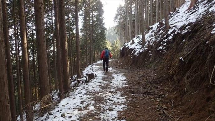 京都北山中心部のお山 天ヶ岳 4
