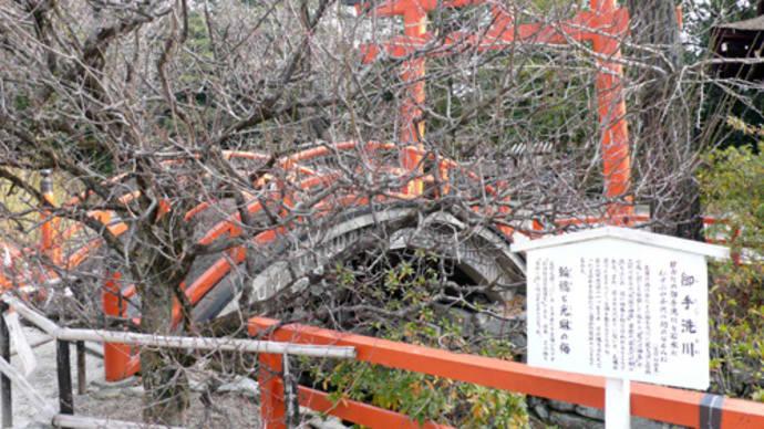 ■2011京都。