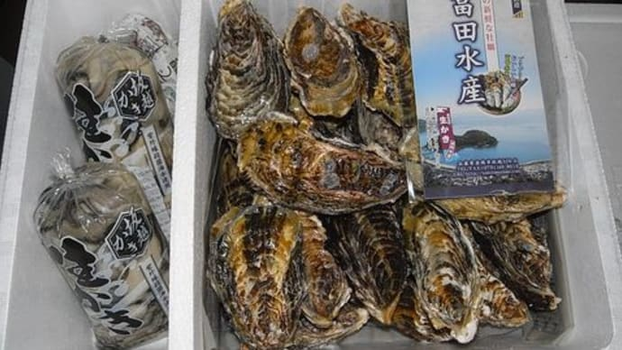 赤穂坂越の牡蠣 冨田水産