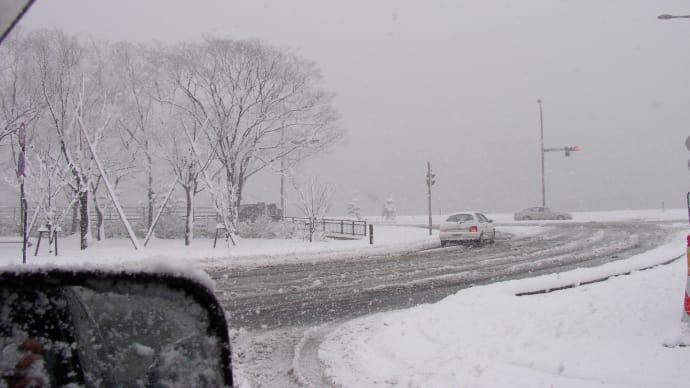 ♪雪やコンコ。霰やコンコ。降っても降っても~