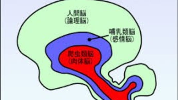 脳タイプ別悪人