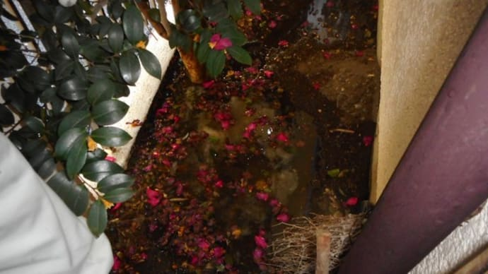 汚水の詰まり修理・・・千葉市
