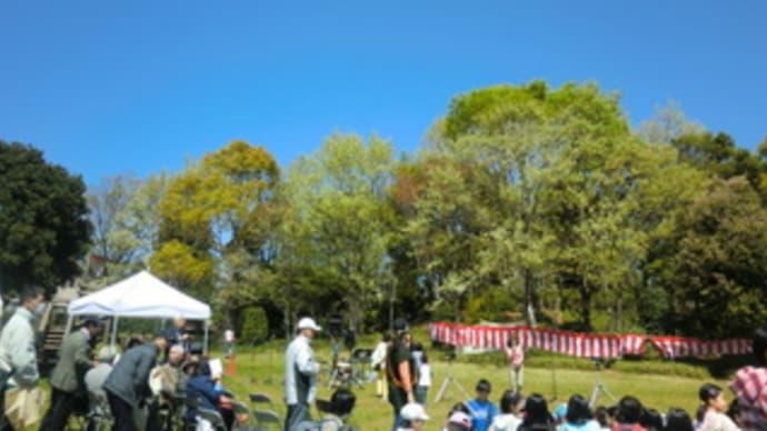 さくら祭り2013