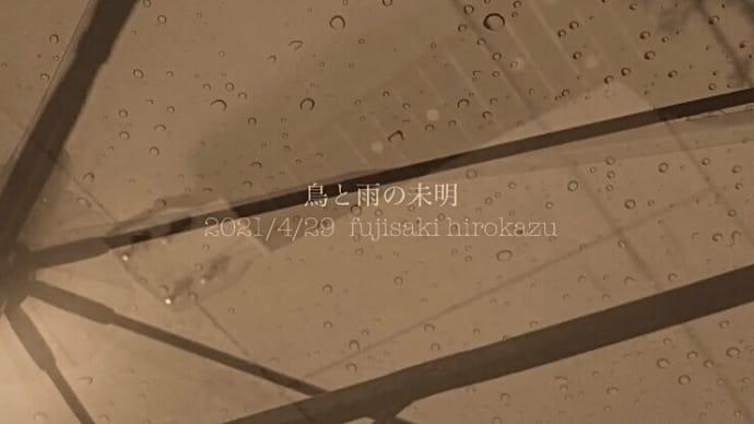 [ミュージックビデオ] 新曲「鳥と雨の未明」