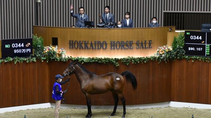 【オータムセール2020(Autumn Sale)、10月20日分)】~結果レポート(最高額馬はディスクリートキャット産駒)