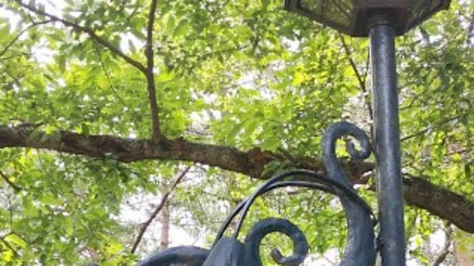 八ヶ岳山麓の野鳥と出会えるペンション「ベルクコット」