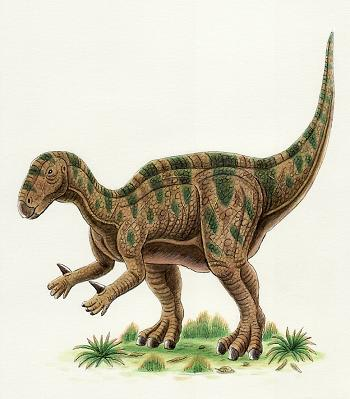 イグアノドン - 恐竜だいす記!