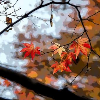 鶏足寺の紅葉 その8