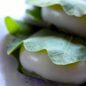 5月5日は「こどもの日」箱根自然薯の森 山薬