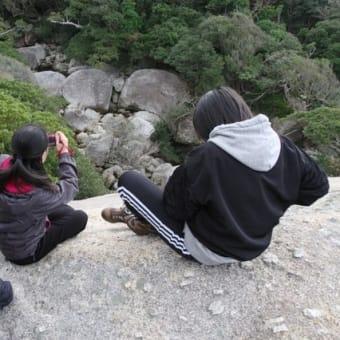 動物の密度がすごい屋久島の森。シカ30頭、サル20頭ぐらいと会ってきました!【屋久島世界自然遺産の森あるきツアーin西部林道】