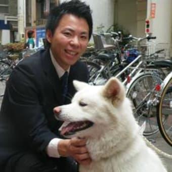 秋田犬のファン(・・?