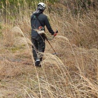 「森林作業の効率性・安全を志向する担い手研修」が開催されました!