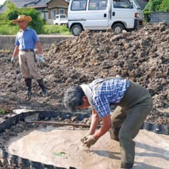 北吉田保存会が蓮池3カ所整備、数年後最盛期へ 〈2015年6月2日〉