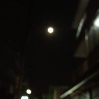 多摩川散歩