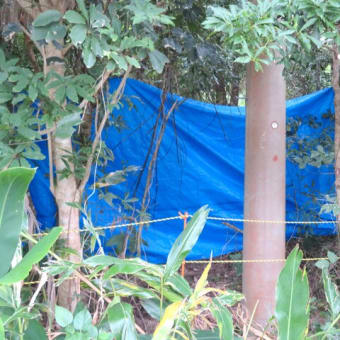 辺野古ゲート前の抗議行動/時化で遅滞する埋め立て作業