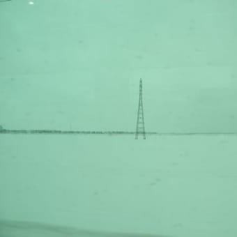 2021年第02週(1月10~16日)の写真