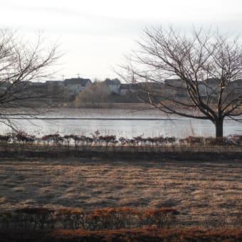 今朝の城沼