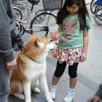 若いお嬢さんが写メでパチリ(^_-)-☆