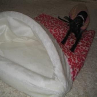 ベッド(2)