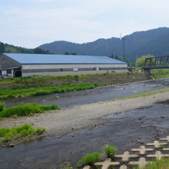 美山地区の状況2+福井地区