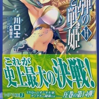 魔弾の王と戦姫14巻の感想レビュー(ライトノベル)
