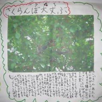 知る見るバザール・田中優さん講演会(松戸)報告