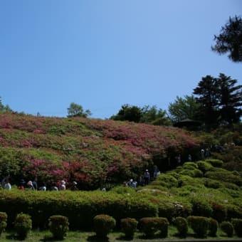 小室山と美味しいランチ☆伊豆旅行2