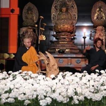 清水寺に1000本のカーネーション生け花 「花祭り」に合わせ特別拝観