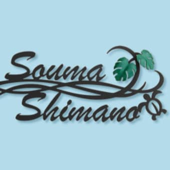 プルメリア×波×モンステラ×ホヌの二世帯住宅用のハワイアン表札