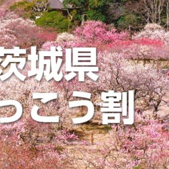 追加販売開始。WEB限定【茨城県ふっこう割】宿泊プランの限定販売につきまして