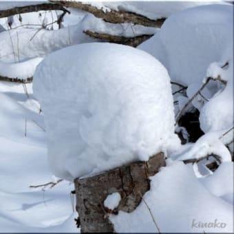 雪降りの後は・・・。