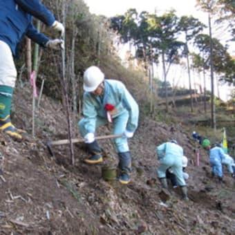 企業参加の森づくり~「心の故郷・いやしの森」 島根県森林土木技術協会~