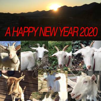 2020年 新年明けましておめでとうございます!