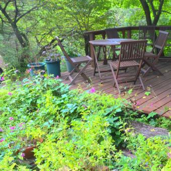 大雷雨の後の緑鮮やかなウッドデッキでコーヒーを飲む。