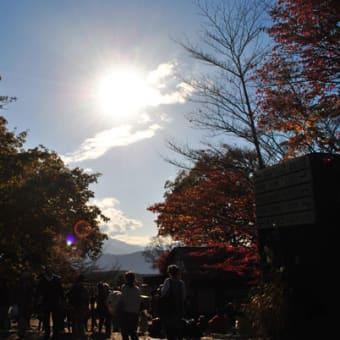 【慶応留学一年間】「多忙」の秋 その1 徒歩高尾山
