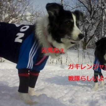 2014走り初め♪