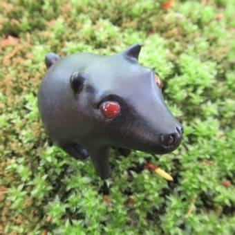 庭の黒ひ犬
