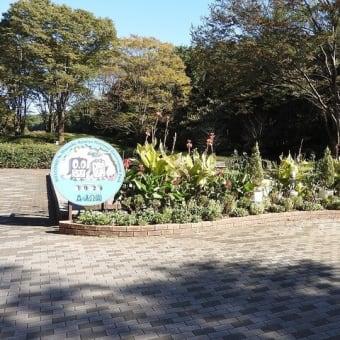 20211024 武蔵丘陵森林公園
