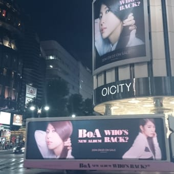 BoA 2014 Japan Tour