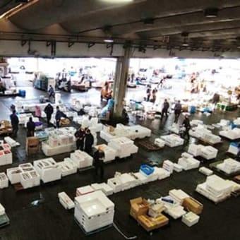 日本全国、世界からも美味しい魚が集まる小田原魚市場!JSフードシステム