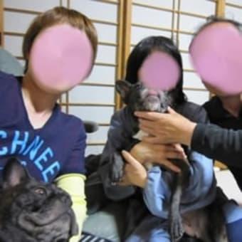 ** 広島からバジル&パセリ&トシ&ミホちゃん来ました♪ **