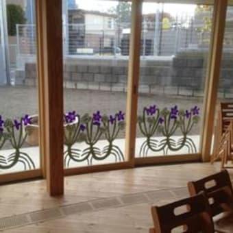ガラスに花が咲いた!