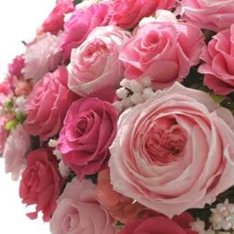 ♪フルブルーム・ボーテ&数色のピンクローズ♪