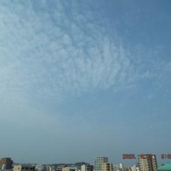 2020年04月11日(土) 薄雲の広がる、晴れ。 → ?