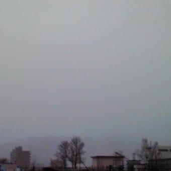 初雪ってこんな感じ?