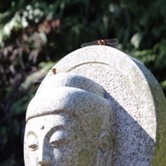 太龍寺さん いわや道・平等寺道を行く