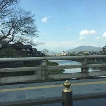 桜を訪ね     京都  平安神宮にて